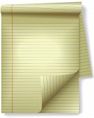 pic of stenography  - Pages of legal ruled notebook pad paper  - JPG
