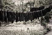 The Washed Socks Are Hung On The Rope. Dry Socks Are Dried On The Street.hanging Clothes Drying Outd poster