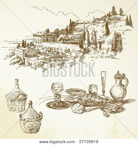 wine, vineyard, Tuscany - hand drawn collection
