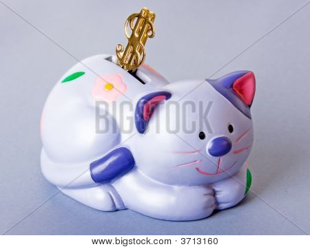 Cat-Moneybox With Dollar