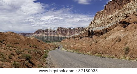 Biking the Desert Road