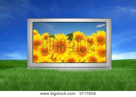 großer tv außerhalb in einer Fantasielandschaft festlegen