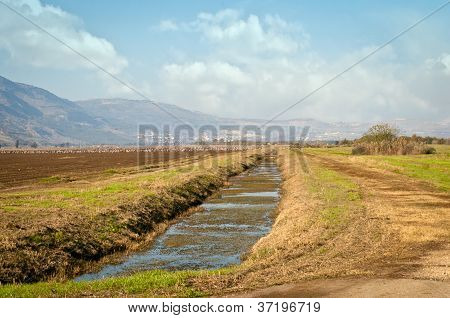 Landscape Of The Upper Galilee.  Israel.