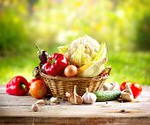 Vegetables . Fresh Bio Vegetable in a Basket. Over Nature Background
