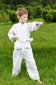 stock photo of jiujitsu  - One little boy in white kimono during training karate kata exercises in summer outdoors - JPG
