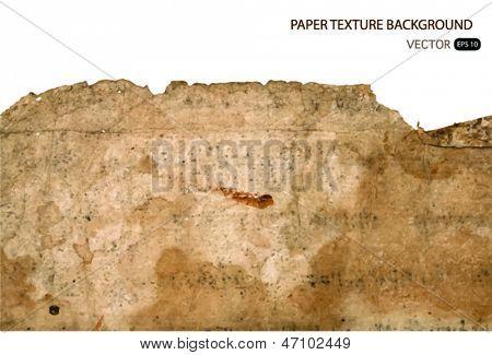 Textura de papel Vintage.Ilustración del vector.