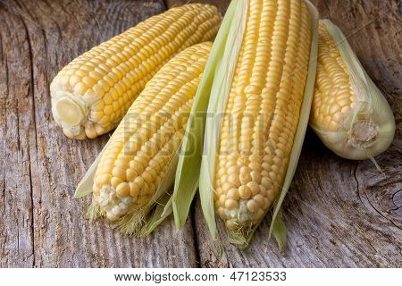maize cob on old wooden background