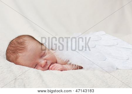 Newborn Sleeping On The Wings Of Angels