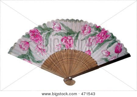 Isolated Japanese Fan