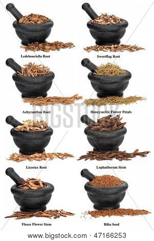 Large chinese herbal medicine ingredients in marble mortars with pestles over white background, with titles