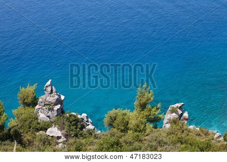 Wild Seaside Landscape