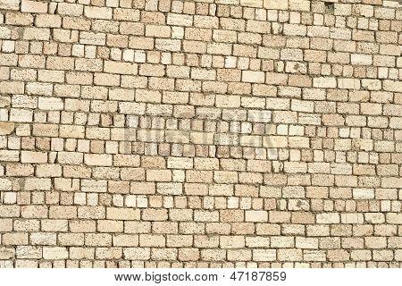 Wall Of Brick Shell.