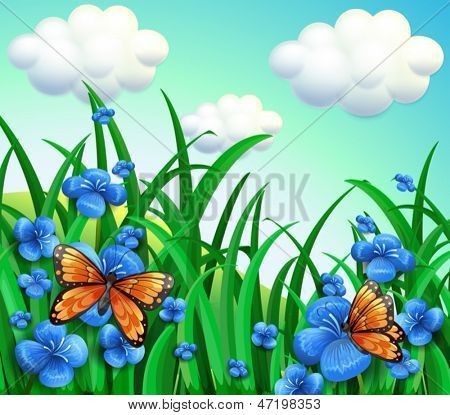 Illustration of the garden with blue flowers and orange butterflies