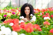 image of greenhouse  - Young woman looking at flowers in a greenhouse - JPG
