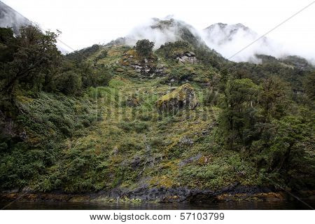 The Landscape Of Doubtful Sound