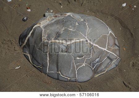 Turtle Boulder