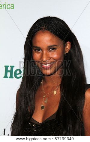 Joy Bryant at