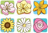 stock photo of buttercup  - A set of 6 flowers - JPG