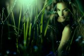 foto of fairy-tale  - beautiful elf woman from a fairy tale - JPG