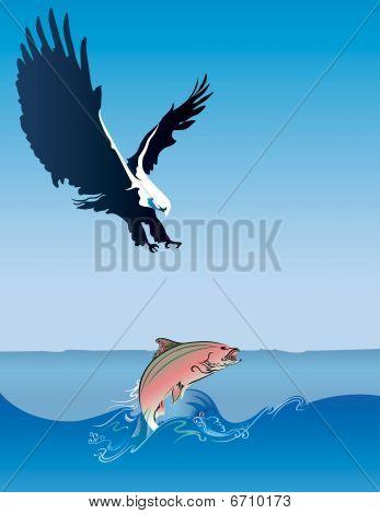 Eagle Hunting Fish