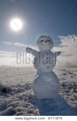 Snowman In The Sun