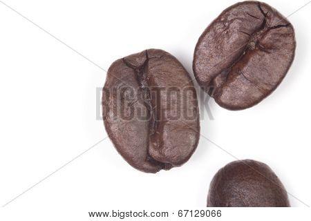 Macro Roasted Coffee Beans