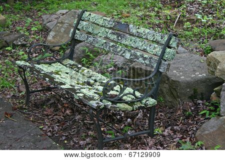Mossy Park Bench