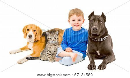 Boy, cat and two dogs sitting together