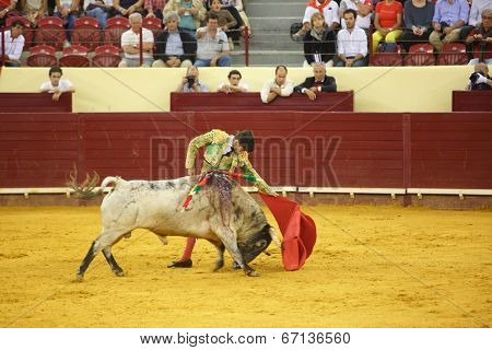 LISBON - JUNE 19: Jose Garrido bullfighter performs at a portuguese style bullfighting show in campo pequeno in Lisbon, Portugal, June 19, 2014