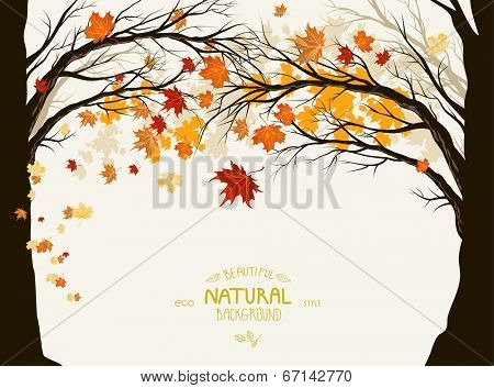 Autumn trees with deciduous leaves. Frame with space for text