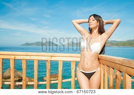 Beautiful Brunette Basking In The Sun