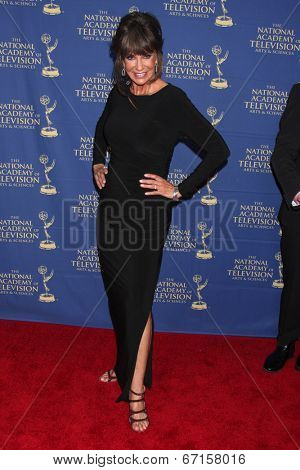 LOS ANGELES - JUN 20:  Jess Walton at the 2014 Creative Daytime Emmy Awards at the The Westin Bonaventure on June 20, 2014 in Los Angeles, CA