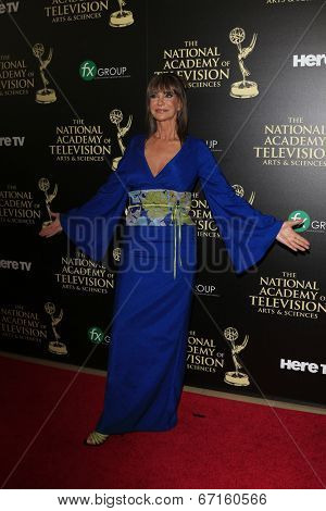 BEVERLY HILLS - JUN 22: Jess Walton at The 41st Annual Daytime Emmy Awards at The Beverly Hilton Hotel on June 22, 2014 in Beverly Hills, California