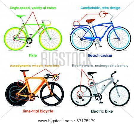 Modern cruiser, fixie, time-trial bicycle and electric bike infographics