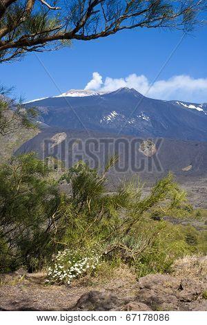 The Etna vulcan