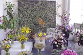 foto of manor  - floristic flower composition in old manor house terrace - JPG