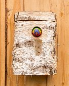 stock photo of lorikeets  - Australian Rainbow Lorikeet Trichoglossus moluccanus nest on a wall - JPG