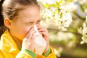 picture of blowing nose  - Little girl is blowing her nose near spring tree in bloom - JPG