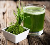 stock photo of minerals  - Young barley and chlorella spirulina - JPG