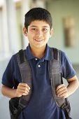 image of pre-teen boy  - Pre teen boy at school - JPG