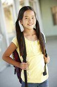 picture of pre-teen  - Pre teen girl at school - JPG