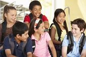 picture of pre-teen boy  - Pre teen children in school - JPG