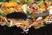 stock photo of humus  - Compost with composted soil - JPG