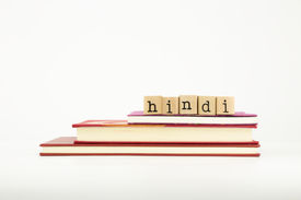 picture of dialect  - hindi word on wood stamps stack on books language and study concept - JPG
