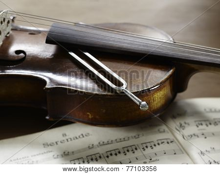 Violin, Musical Notes And Tuning Fork