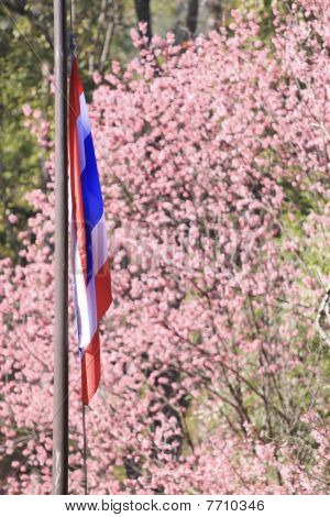 thai national flag