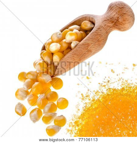 Uncooked cornmeal maize flour heap and spoon scoop isolated on white background
