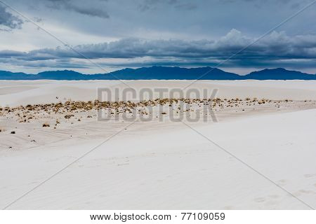 The Amazing Surreal White Sands Of New Mexico