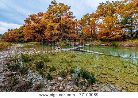 Fall Foliage and Clear Water at Garner State Park, Texas