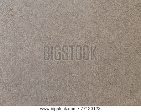 Textured Beige Leather